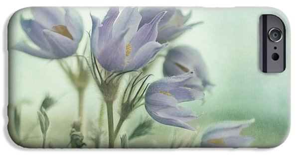 Close Up Floral iPhone Cases - On The Crocus Bluff iPhone Case by Priska Wettstein