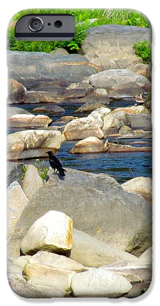 On the Rock iPhone Case by Randi Shenkman