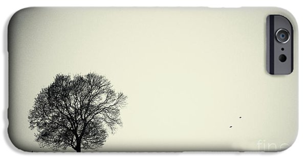 Tree iPhone Cases - One tree iPhone Case by Angela Doelling AD DESIGN Photo and PhotoArt