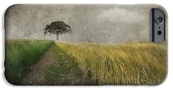 Field. Cloud Mixed Media iPhone Cases - One Tree iPhone Case by Svetlana Sewell