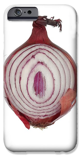 Onion iPhone Case by Frank Tschakert