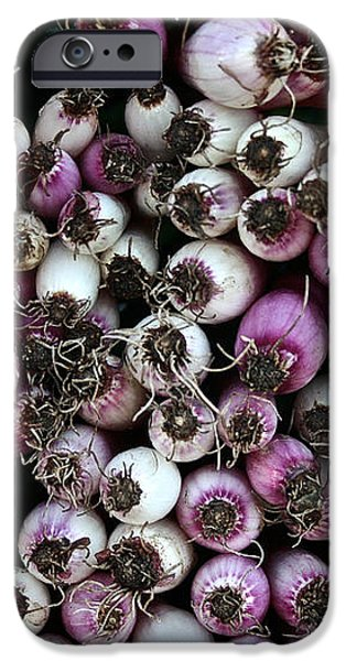 Onion Power iPhone Case by Susan Herber