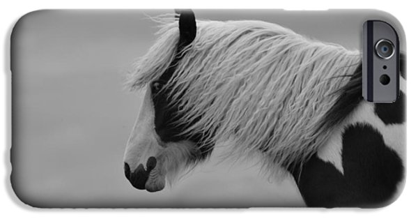 Gray Hair iPhone Cases - Only the Wind Spoke of Softness iPhone Case by Danny Van den Groenendael