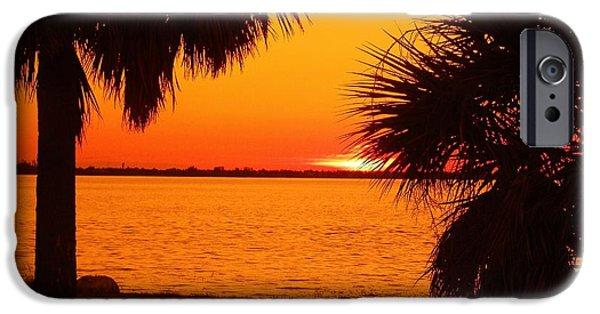 Palm Tree Greeting Cards iPhone Cases - Orange Heat iPhone Case by Florene Welebny
