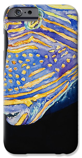 Triggerfish Paintings iPhone Cases - Orange-lined Trigger iPhone Case by Tanya L Haynes - Printscapes