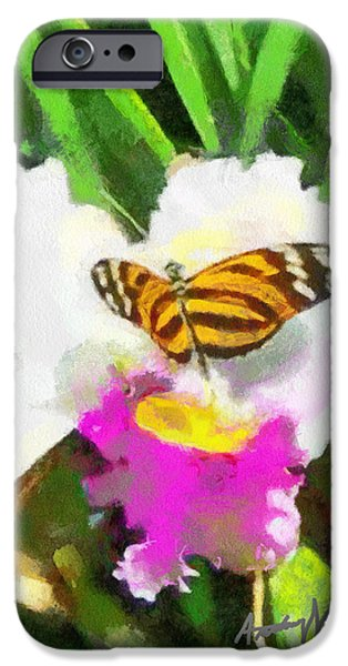 Orchid and Butterfly iPhone Case by Anthony Caruso