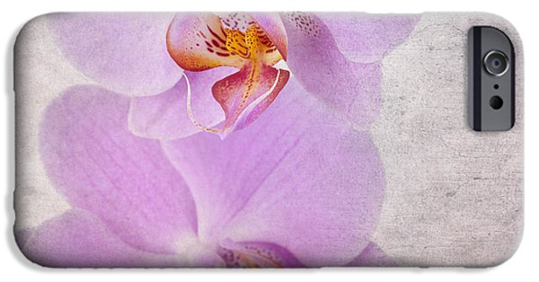 Close Up Floral iPhone Cases - Orchid iPhone Case by Jane Rix