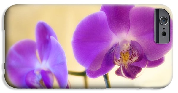 Lips iPhone Cases - Orchid (phalaenopsis Sp.) iPhone Case by Maria Mosolova