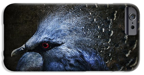 Photomanipulation iPhone Cases - Ornamental Nature iPhone Case by Andrew Paranavitana