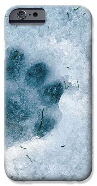 Otter Footprint In Snow iPhone Case by Duncan Shaw