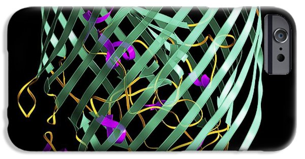 Digitally Created iPhone Cases - Outer Membrane Receptor Protein Molecule iPhone Case by Laguna Design