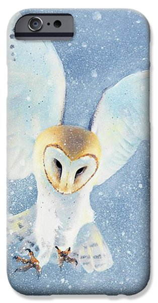 Barn Owl iPhone Cases - Owl Detail iPhone Case by Tim Dangaran