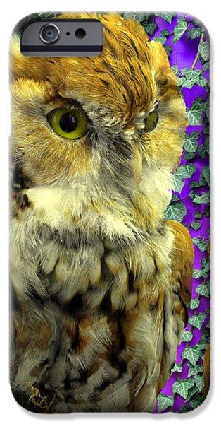 Owl Look iPhone Case by Lynda Lehmann