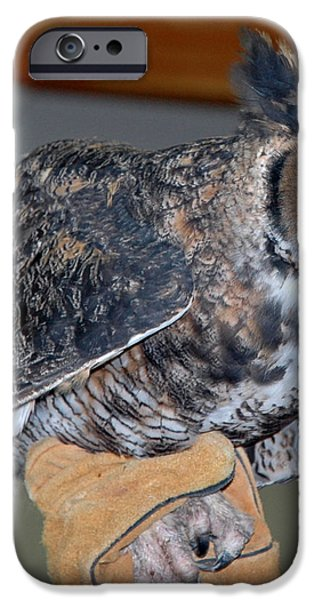Owl together now iPhone Case by LeeAnn McLaneGoetz McLaneGoetzStudioLLCcom