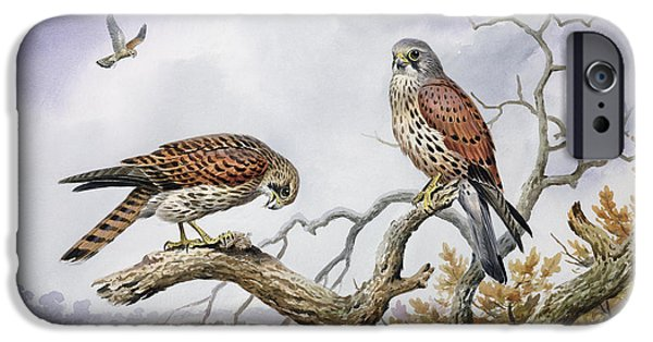 Hovering iPhone Cases - Pair of Kestrels iPhone Case by Carl Donner