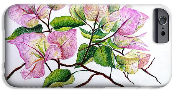 Botanical Pastels iPhone Cases - Pale Pink Bouganvillea iPhone Case by Karin Kelshall- Best