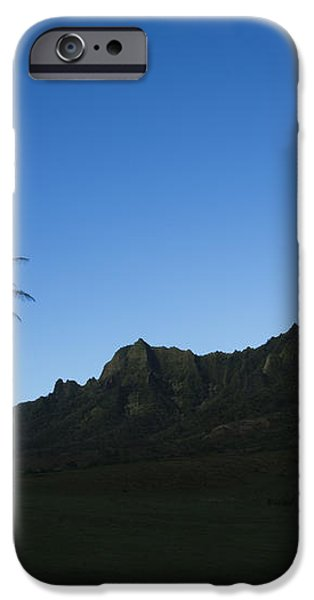 Palm and Blue Sky iPhone Case by Dana Edmunds - Printscapes