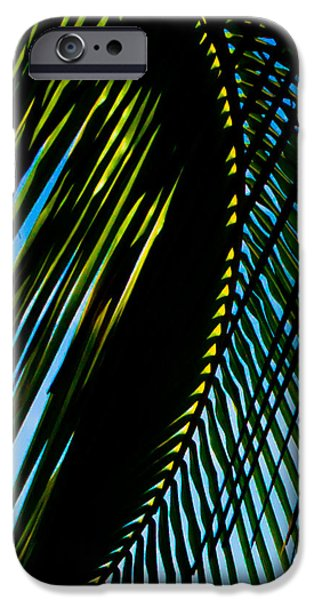 Jaco iPhone Cases - Palm Frond Curve iPhone Case by Anthony Doudt