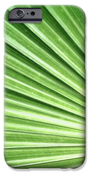 Palm leaf iPhone Case by Rudy Umans