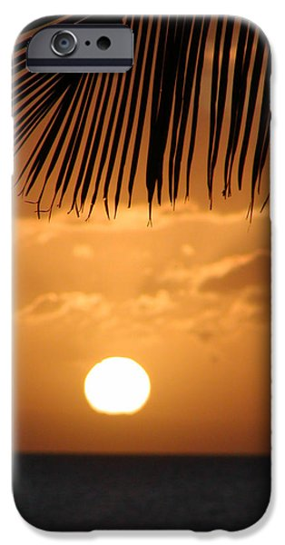 Palm Tree Greeting Cards iPhone Cases - Palm Sunset Hawaii iPhone Case by Dustin K Ryan