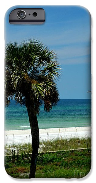 Panama City Beach Photographs iPhone Cases - Palmetto and the Beach iPhone Case by Susanne Van Hulst