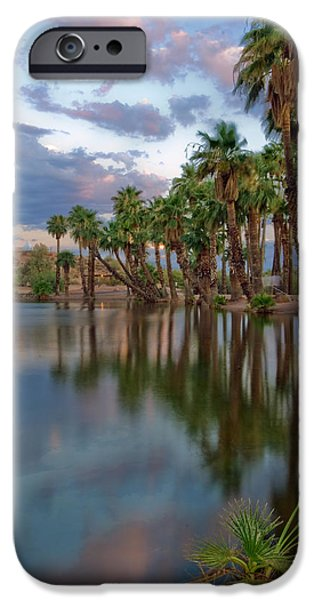 Palms Trees over Papago Lake iPhone Case by Dave Dilli