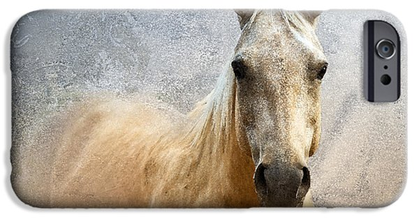 American Quarter Horse iPhone Cases - Palomino iPhone Case by Betty LaRue