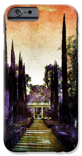 Cypress Trees iPhone Cases - Pans Twilight iPhone Case by Laura Iverson