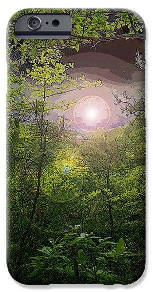 paradise at dawn iPhone Case by Nina Fosdick