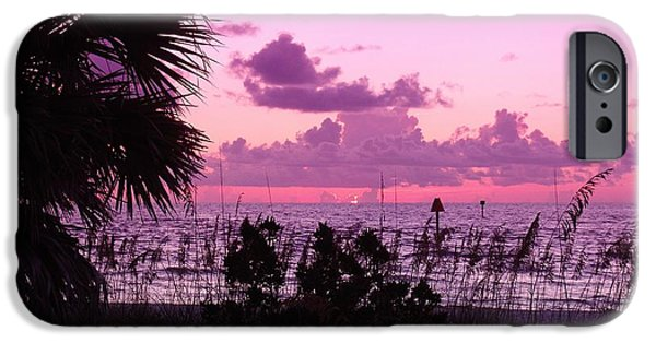 Palm Tree Greeting Cards iPhone Cases - Paradise Day Ends iPhone Case by Florene Welebny