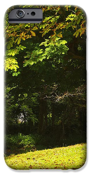 Park Bench Beside The Owenriff River In iPhone Case by Trish Punch