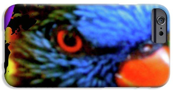 Animal Photograph Mixed Media iPhone Cases - Parrot Colors iPhone Case by Debra     Vatalaro