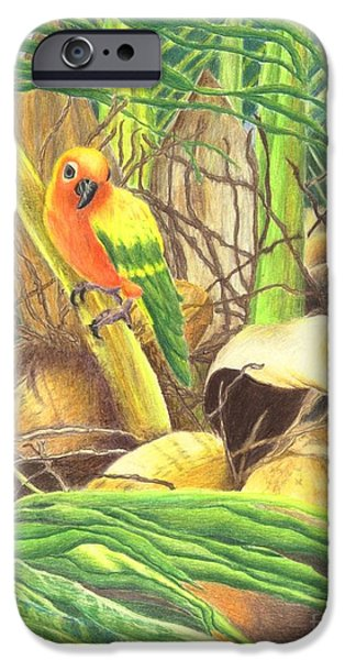 Yellow Jewelry iPhone Cases - Parrot in Palm iPhone Case by Norma Gafford
