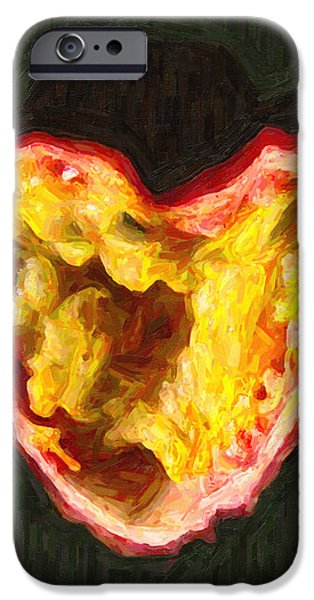 Passion Fruit iPhone Case by Wingsdomain Art and Photography