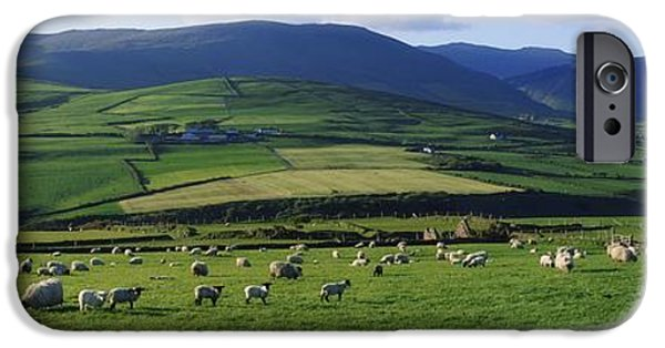 Fed iPhone Cases - Pastoral Scene Near Anascual, Dingle iPhone Case by The Irish Image Collection