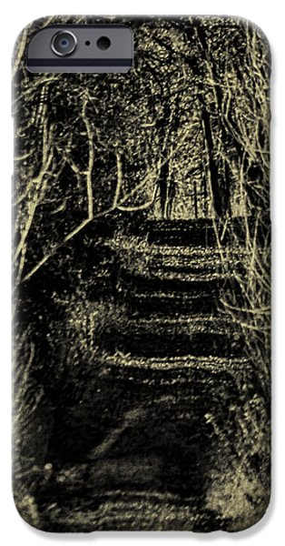 Overhang iPhone Cases - Path of Sticks iPhone Case by Thomas Young