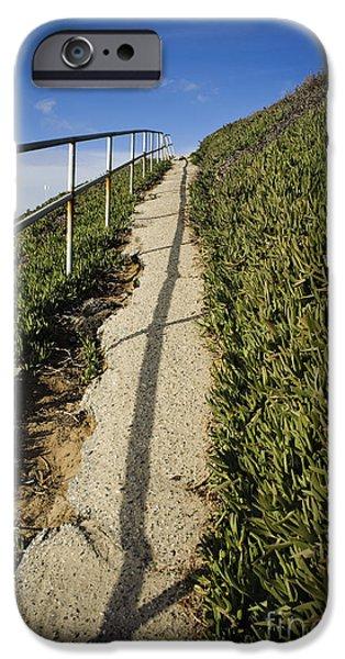 Path through Grasslands iPhone Case by sam bloomberg-rissman