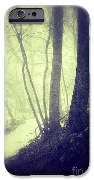 Rural Snow Scenes iPhone Cases - Path Through Misty Snowy Woods iPhone Case by Jill Battaglia