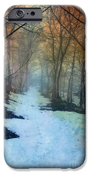 Recently Sold -  - Forest iPhone Cases - Path Through the Woods in Winter at Sunset iPhone Case by Jill Battaglia