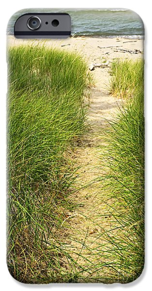 Grass iPhone Cases - Path to beach iPhone Case by Elena Elisseeva