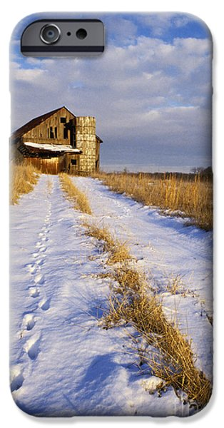 Indiana Scenes iPhone Cases - Pathway to Shelter - FS000412 iPhone Case by Daniel Dempster