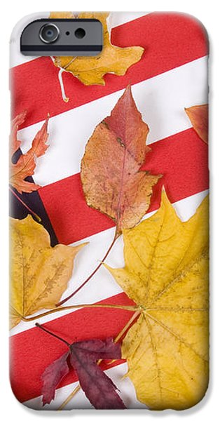 Patriotic Autumn Colors iPhone Case by James BO  Insogna