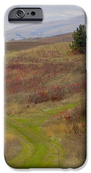 Paved in Green iPhone Case by Idaho Scenic Images Linda Lantzy