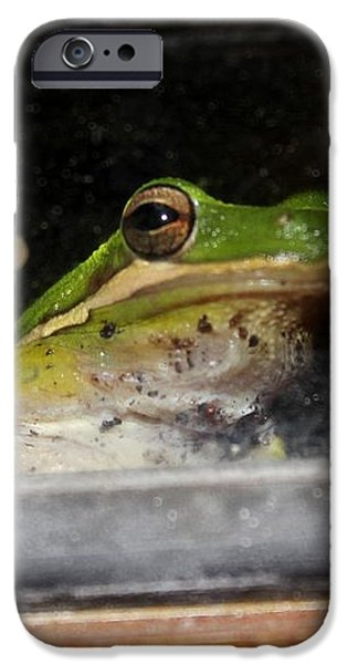 Peace Out Frog iPhone Case by Theresa Willingham