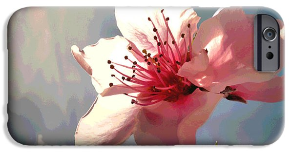 Fruit Tree Art Giclee iPhone Cases - Peach Blossom Macro 2 iPhone Case by Joyce Dickens