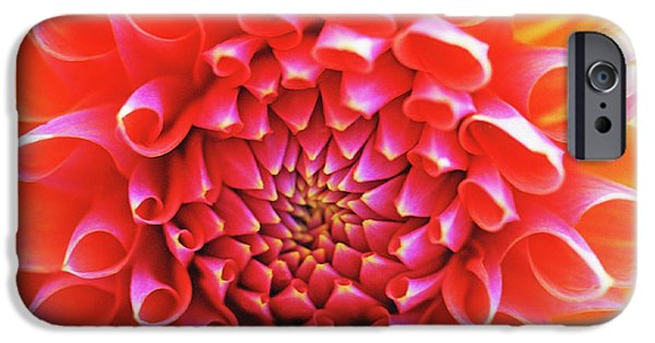 Close Up Floral iPhone Cases - Peachy Dahlia iPhone Case by Kathy Yates