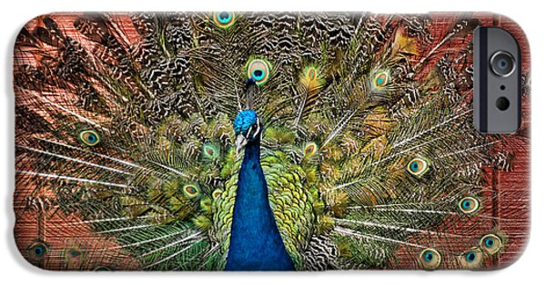 Hera iPhone Cases - Peacock tails iPhone Case by Paul Ward