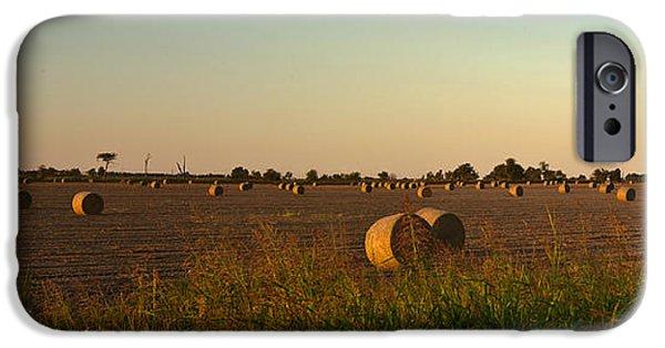 Arkansas iPhone Cases - Peanut Field Bales at Dawn 1 iPhone Case by Douglas Barnett