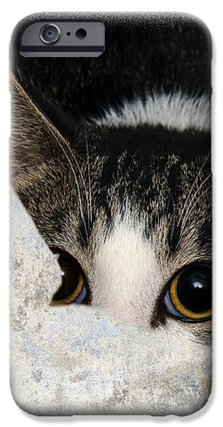 Peek A Boo I See You Too iPhone Case by Andee Design