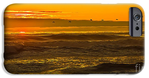 Cape Disappointment iPhone Cases - Pelicans Flying Home II iPhone Case by Robert Bales